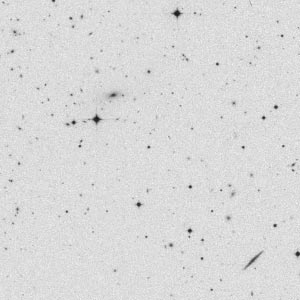 Digitised SuperCOSMOS image of a section of a plate from taken on the UK Schmidt Telescope Southern Sky Survey