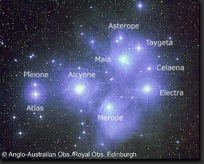 The Pleaides, a young open cluster.