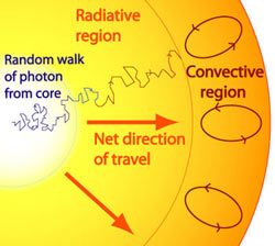 A random walk of a photon from the core of a star.