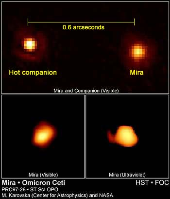 HST image of Mira and its binary companion.