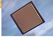 Kodak KAF-4301E 4.3 million pixel CCD chip.