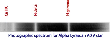 Photographic spectra of Alpha Lyrae