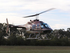 A helicopter hovers just above the ground. The helicopter has black and white stripes that sweep from the nose up to the tail. There are trees in the background.